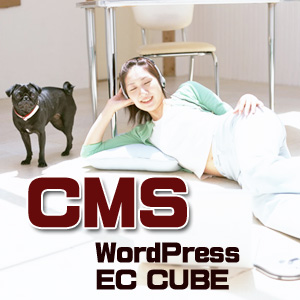CMSのイメージ